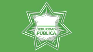 seguridad-publica2-990x592